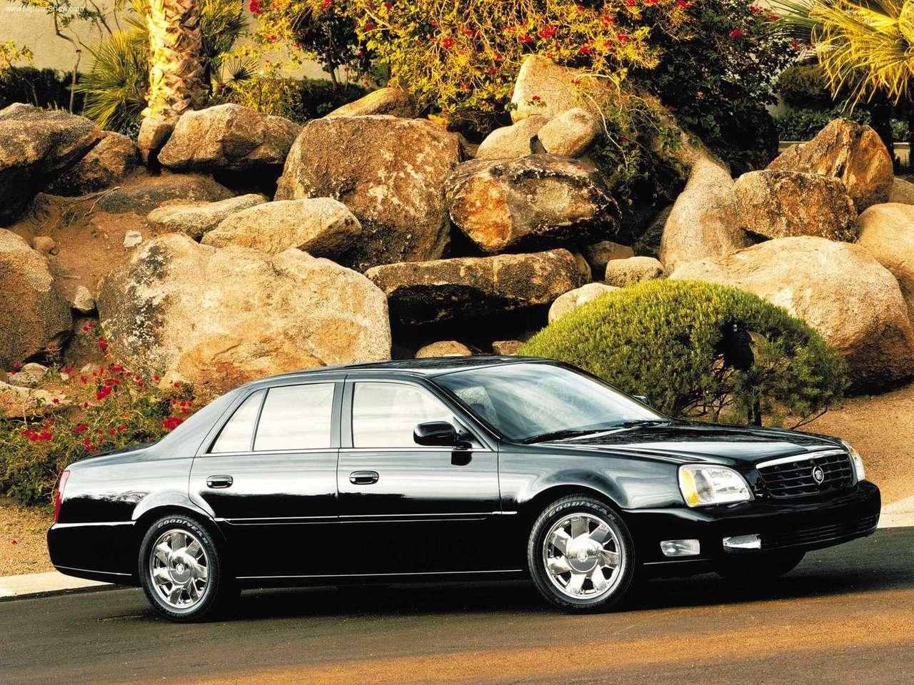 Cadillac DTS 2001 foto - 6