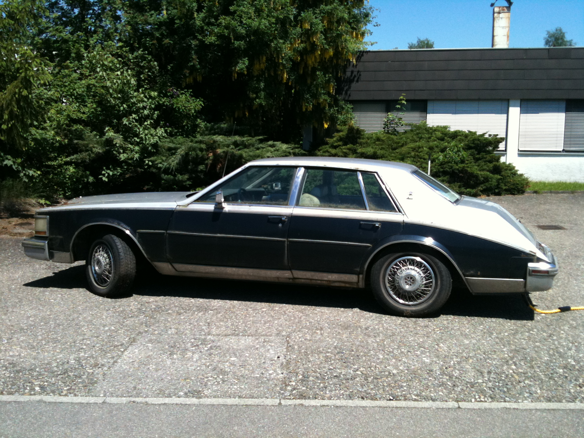 Cadillac Seville 1981 foto - 1