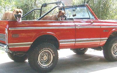 Chevrolet Blazer 1991 foto - 2
