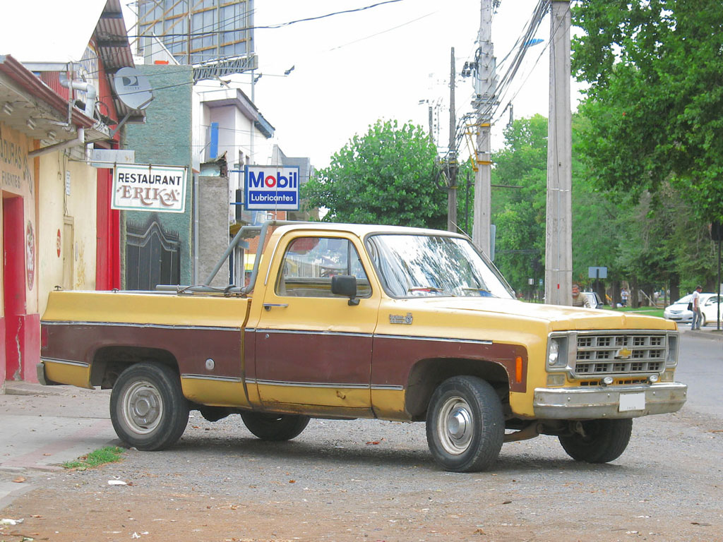 Chevrolet C 10 1977 foto - 5