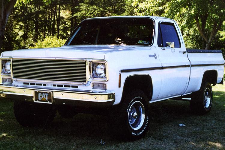 Chevrolet C 10 1982 foto - 5
