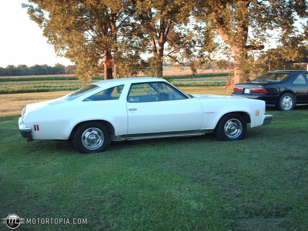 Chevrolet Chevelle 1973 foto - 3