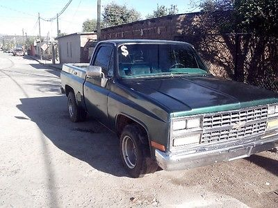 Chevrolet Cheyenne 1987 foto - 5