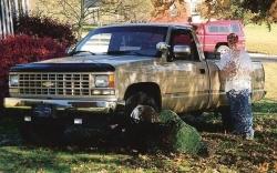 Chevrolet Cheyenne 1991 foto - 3