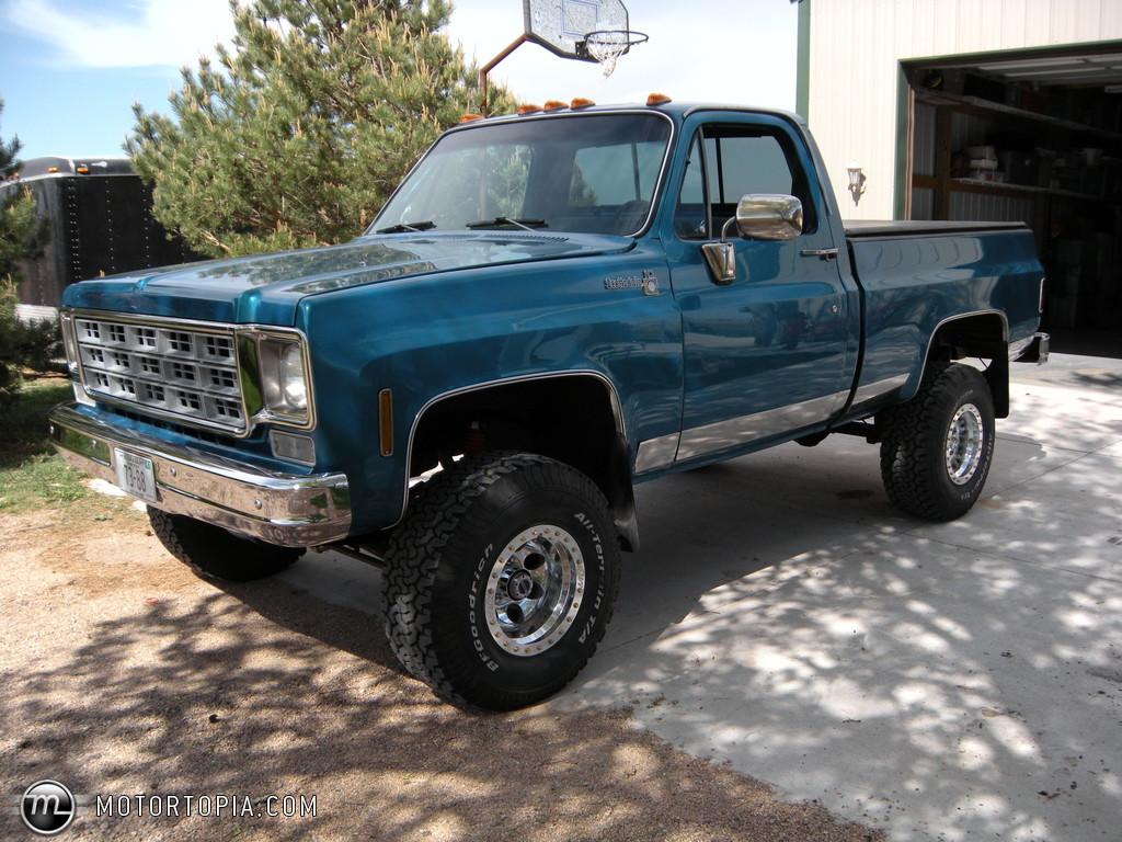 Chevrolet Pickup 1978 foto - 4