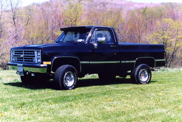 Chevrolet Scottsdale 1981 foto - 2