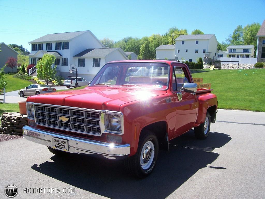 Chevrolet Silverado 1977 foto - 1