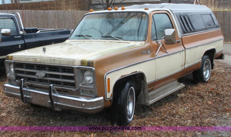 Chevrolet Silverado 1978 foto - 5
