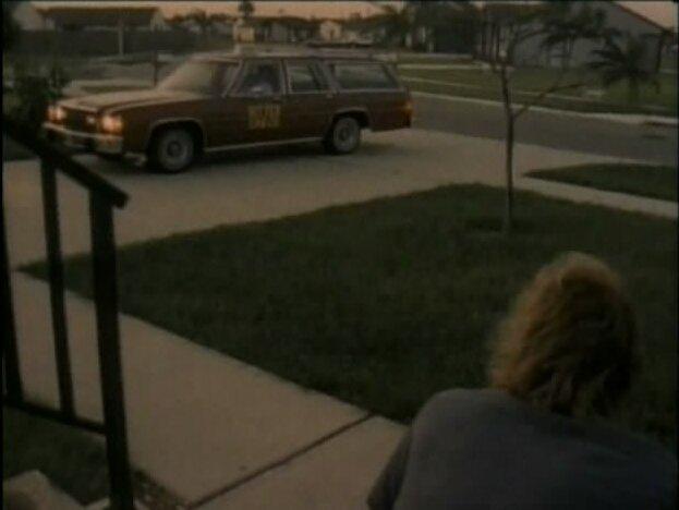 Ford LTD 1979 foto - 5
