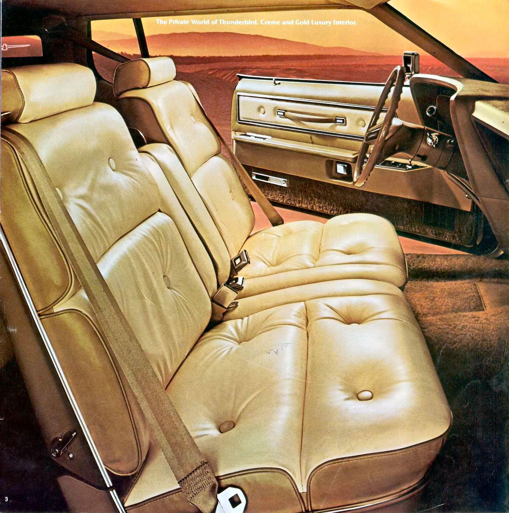 Ford Thunderbird 1976 foto - 2