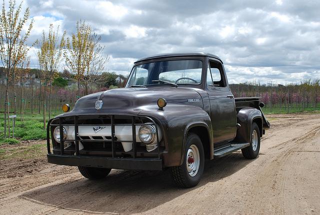 Ford Truck 1954 foto - 4